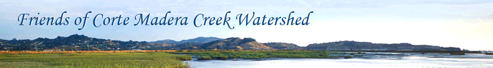 Friends of Corte Madera Creek Watershed