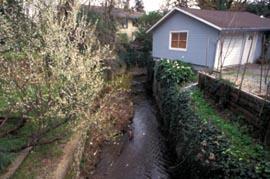 Creek Encroachment