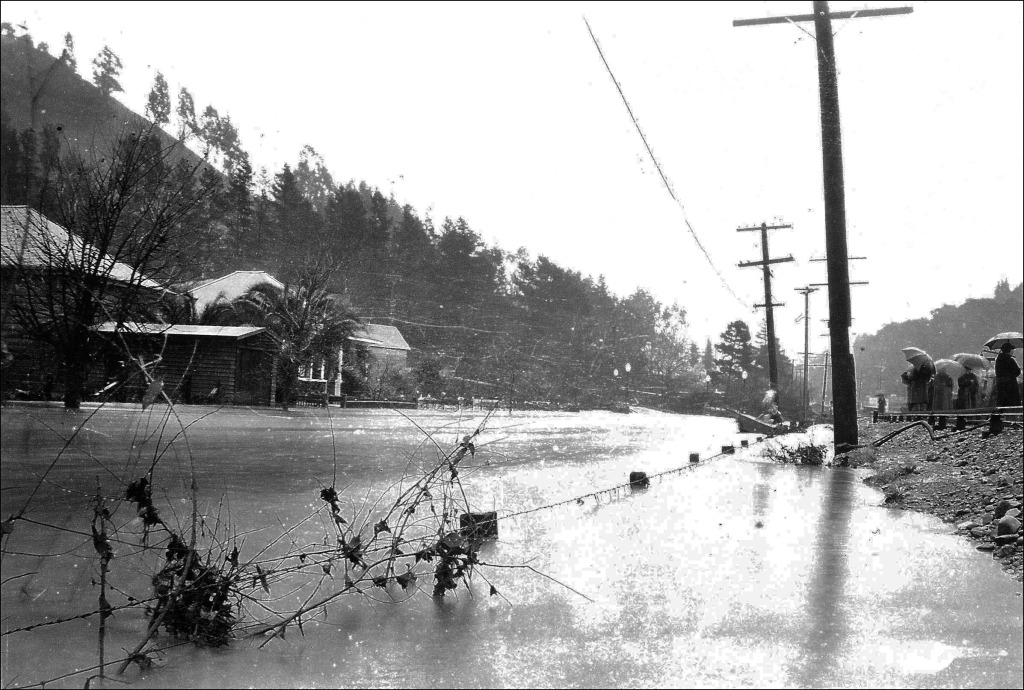 A crowd gathers on the embankment built for the railroad tracks which formerly ran down Center Boulevard, to watch flooding on Sycamore Avenue in 1925. The side of Red Hill is visible in the upper left of the photo. Photo courtesy of San Anselmo Historical Museum