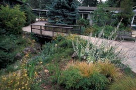 Care with gardens near creeks