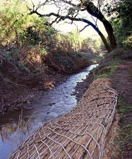 Natural materials used to stabilize a creek